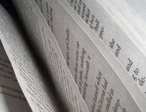 ficción-autobiográfica